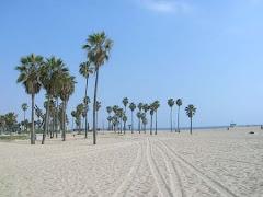 Visiter Venice Beach