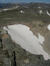 Photo: The dwindling Tyndall Glacier.