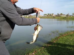 Photo: Buck's 3.72 Bass on 3-7-2012