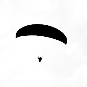 FLY HIGH.!1 by Shafaly Sharma - Sports & Fitness Other Sports (  )