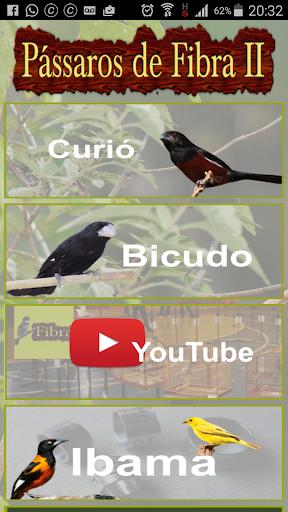 Pássaros de Fibra II