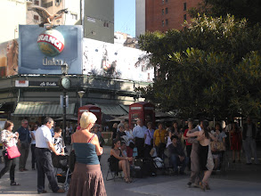 Photo: La Biela cafe and huge gum tree in the background