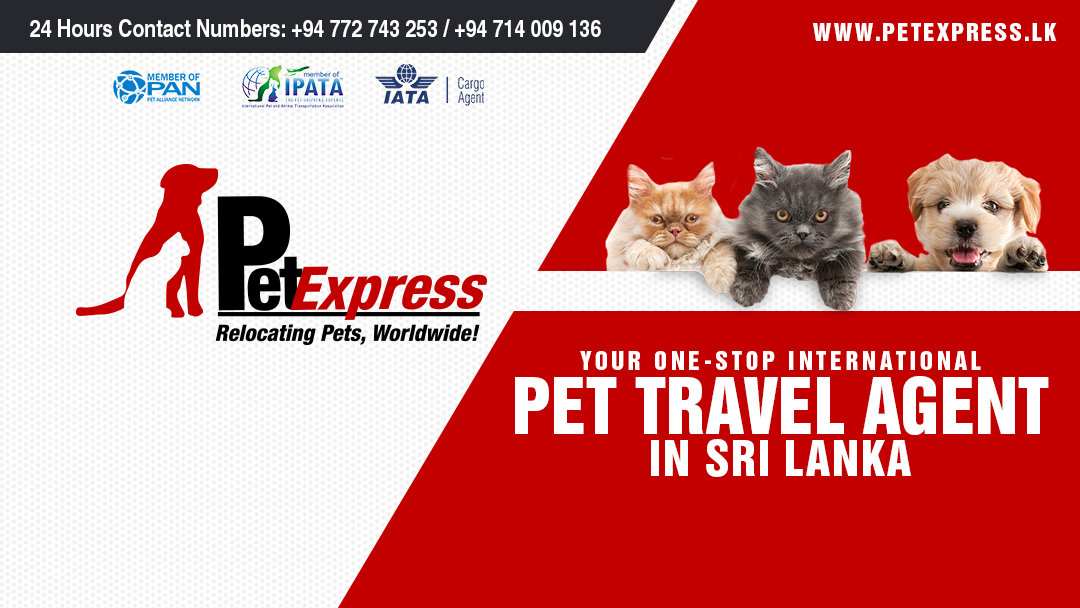 Pet Express - Sri Lanka | International Pet Relocation