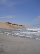 Photo: Sand dune beach interface, Henties Bay