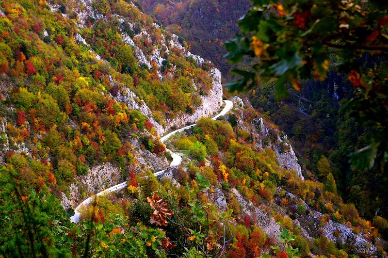 Viaggio nei colori dell'autunno di guidocampani