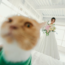 Wedding photographer Aydar Stepanov (Clensy). Photo of 27.12.2017