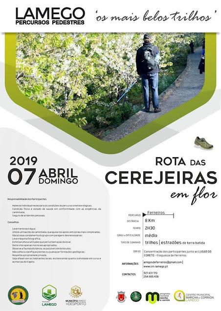 Programa – Rota das Cerejeiras em Flor – Lamego – 7 de abril de 2019