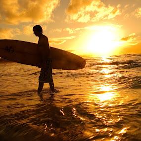 Surfer silhouette by Ben Heys - Sports & Fitness Surfing ( silhouette, tropical, ocean, travel, beach, recreation, spring, sun, surfer, lifestyle, swim, resort, boad, surf, activity, water, orange, sand, passtime, waves, sea, sport, leisure, tourism, fun, dusk, holiday, dawn, sunset, surfboard, australia, summer, active, sunrise )
