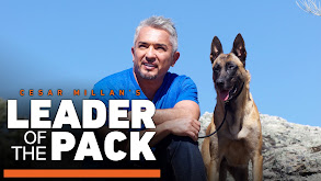 Cesar Millan's Leader of the Pack thumbnail