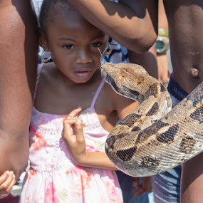 Tongue by VAM Photography - Babies & Children Children Candids ( culture, brooklyn, snake, west indies parade, new york, child )