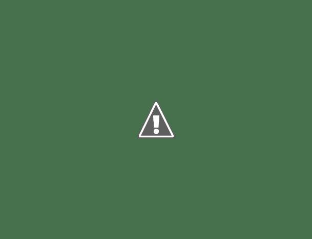 DR RICARDO BIANCHINI: TENEMOS BUEN CONTROL Y LA GENTE COLABORA