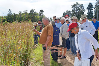 Photo: We examine the tall prairie grasses.