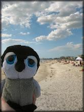 Photo: The beach!