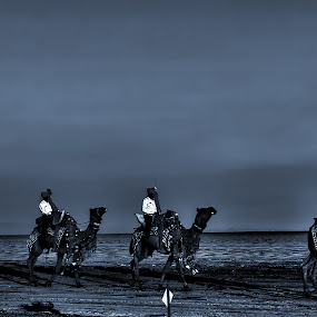 Rann of Kutch by Mohan Matang - Landscapes Deserts