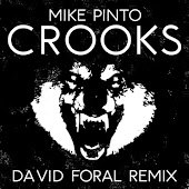 Crooks (David Foral Remix)