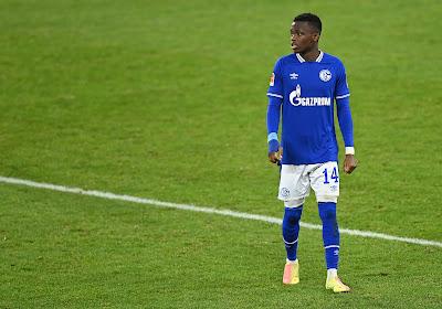 'KRC Genk gaat opvallende slag slaan bij Schalke 04'