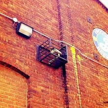 Photo: Caged Camera
