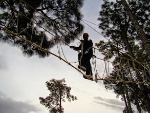 Photo: Burmah Bridge - 15ft High rope Course