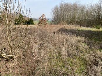 terrain à Montpothier (10)