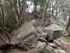 ここも岩が多く(782mピークへ)