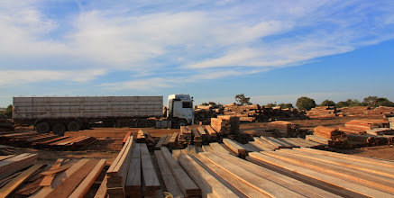 Photo: and lumber yards.....where deforestation really comes alive...