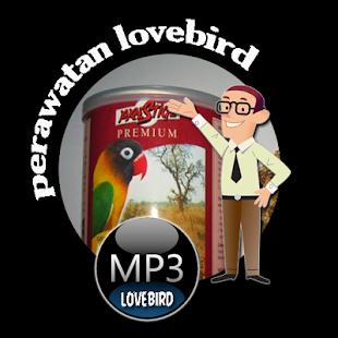 Perawatan Lovebird |Mp3 Ngekek Lovebird Paud - náhled