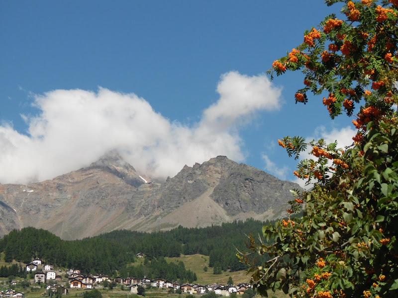 Alpi di joysphoto