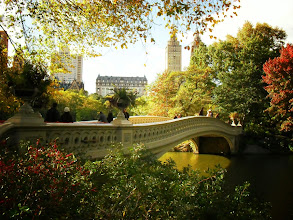 """Photo: """"Sunlight sprinkled on autumn leaves like fairy dust...""""  Bow Bridge at the peak of autumn.   Central Park, New York City.  View the writing that accompanies this post here at this link here:   http://nythroughthelens.com/post/10895220226/bow-bridge-at-the-peak-of-autumn-with-a-view-of"""