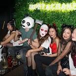 halloween in Hong Kong at HQ in Hong Kong, , Hong Kong SAR