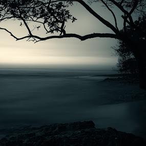 Dark sunset by Trevor Murphy - Landscapes Waterscapes ( tmurphyphotography )