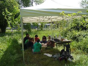 Photo: Journée au sentier nature samedi, pique-nique sous la tente
