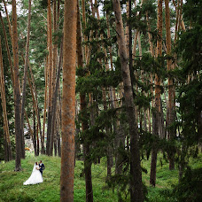 Wedding photographer Vladimir Mescheryakov (smallchange). Photo of 29.12.2015