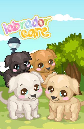 Labrador Puppy Care