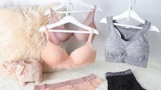 Surtido de ropa íntima del escaparate de Carrefour