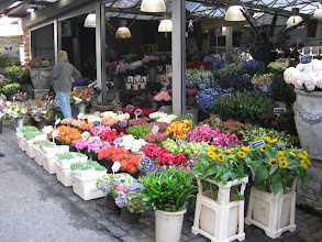 Photo: The few actual flowers at the Bloemmarkt. Most of the stalls were just tourist trash, but then again, it's late in the season.