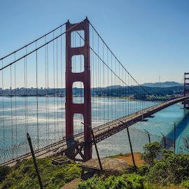 by Aaron Whitaker - Uncategorized All Uncategorized ( ocean, beach, california, bridge, landscape )
