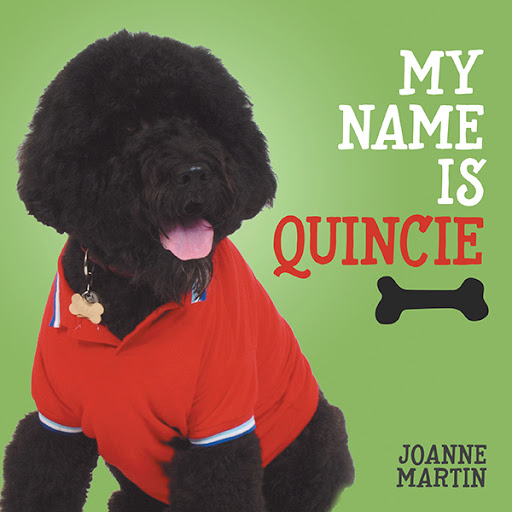 My Name is Quincie cover