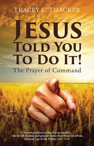 Jesus Told You To Do It! cover