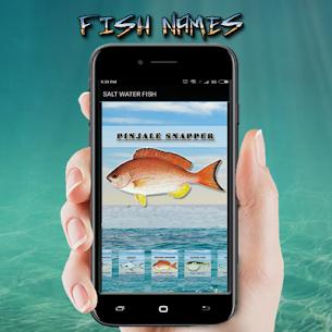 FISH NAMES 4