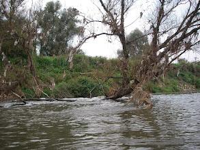 Photo: była wyższa woda