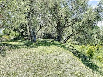 terrain à Sainte-agnes (06)