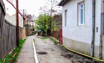 Photo: 2010.04.13