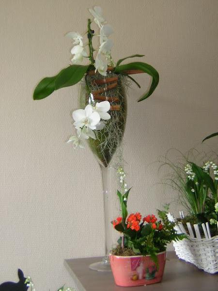 Photo: Fleuriste Des Fleurs à la Maison Téléphone : 01 64 75 27 87 Fax : 01 64 75 27 87 Mail : desfleursalamaison@orange.fr http://www.paroles-de-fleuristes.com/fleuriste-seine-et-marne-77