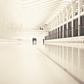 Ribs by Sue Fisher - Buildings & Architecture Other Interior ( minimal, white, reflection, architecture, interior,  )