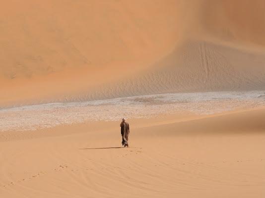 Deserto libico di canosino