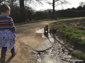 Photo: Barnaby Golden shaking off the excess mud...