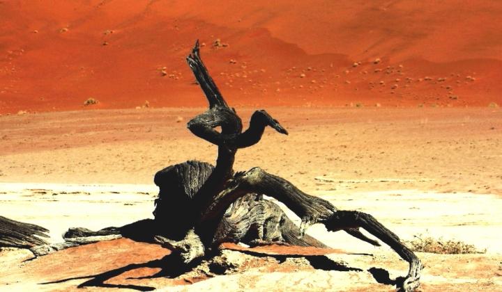 Dino Buzzati: Il deserto dei Tartari di paolo-spagg