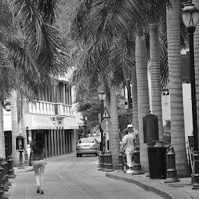 The Shopper by Dave Reece - City,  Street & Park  Street Scenes ( st maarten, philipsburg, shopping )