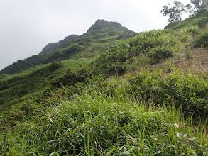 Photo: 登山道から万太郎山を臨む