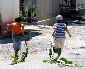 Photo: Day 174 - Boys Playing With Banana Palms